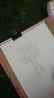 """Taller creativo """"El arte de contemplar""""."""